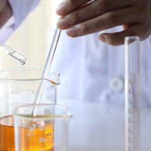 Nitrophenylhydrazine CAS 100-16-6